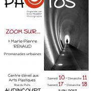 Affiche de l'exposition Zoom sur Marie-Pierre Renaud